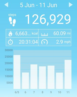 Last week I exchanged 20 hours of time for 60 miles walked...