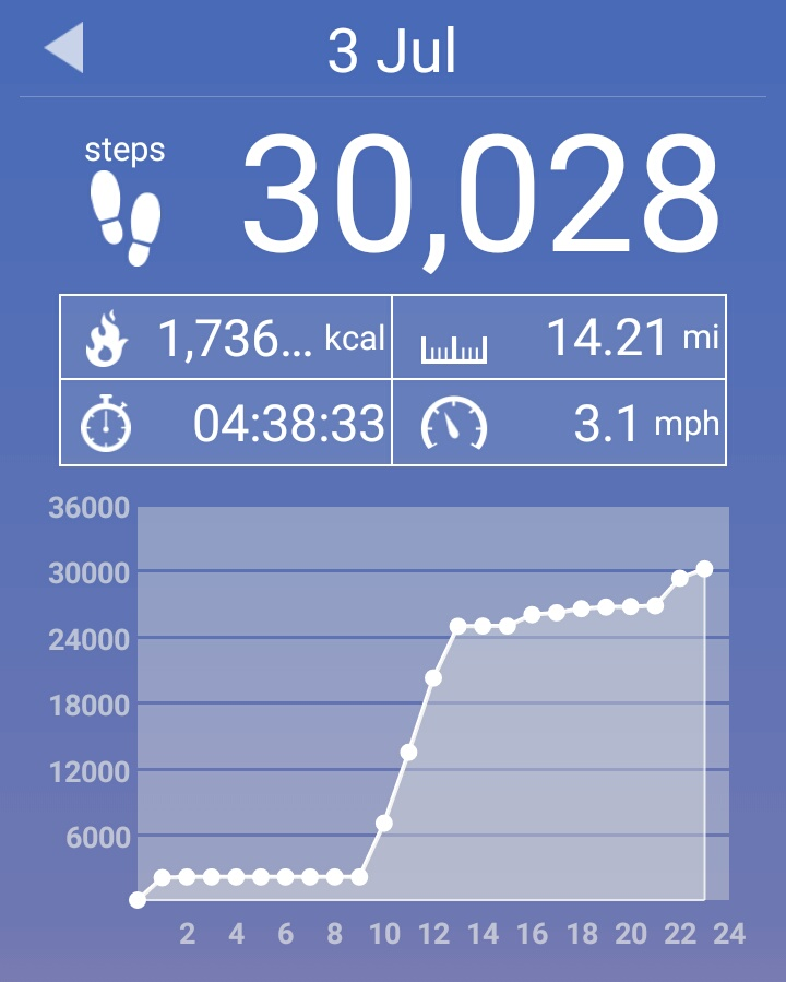 And the only way I managed that was 2000 steps walking home from the bar on Saturday night, plus some steps I got in during the dart tourney. And yes, I took a round about way home after darts so I could break the 30,000 barrier...