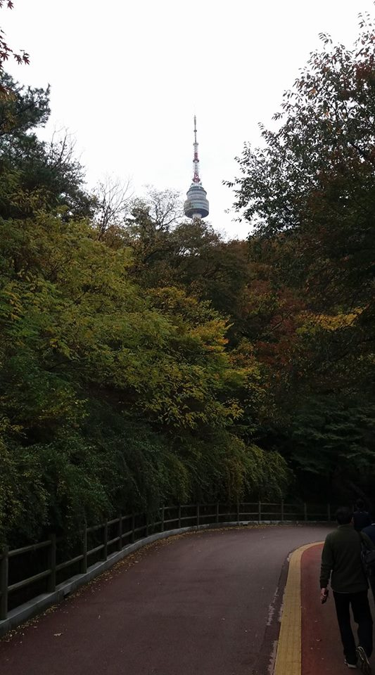 I'm running out of new angles from which to photograph Seoul Tower...