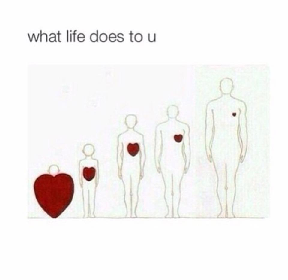 "Saw this on Facebook today and thought ""sad but true"".  Ah well, ""who needs a heart when a heart can be broken"""